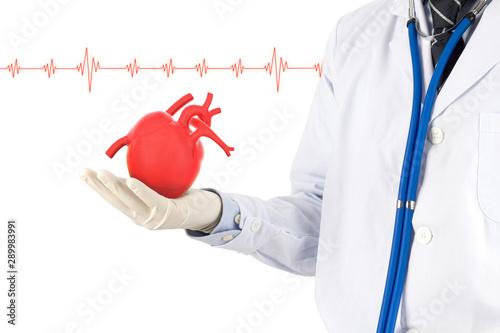 Fototapeta doctor hold heart show signel heart beat, cardiology symptoms , 3D concept obraz na płótnie