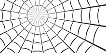 Spider Web Or Cobweb. Halloween Net Background. Vector Illustration.
