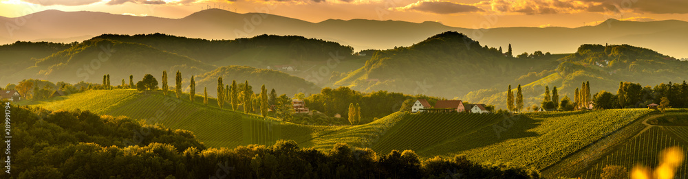 Fototapeta South styria vineyards landscape, near Gamlitz, Austria, Eckberg, Europe. Grape hills view from wine road in spring. Tourist destination, panorama