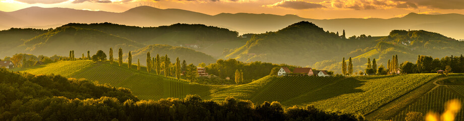 South styria vineyards land...