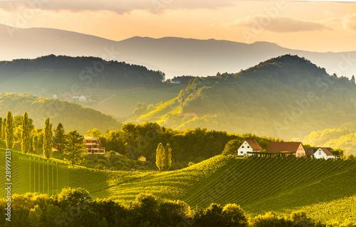 Fototapety, obrazy: South styria vineyards landscape, near Gamlitz, Austria, Eckberg, Europe. Grape hills view from wine road in spring. Tourist destination, panorama