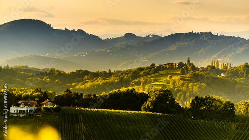 Poster Autumn South styria vineyards landscape, near Gamlitz, Austria, Eckberg, Europe. Grape hills view from wine road in spring. Tourist destination, panorama