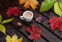 Small White Cup Of Coffee With Froth, Colorful Fallen Leaves And Chestnut On Wet Wooden Bench With Raindrops In Autumn