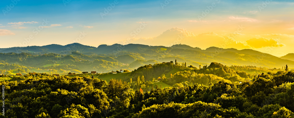 Fototapety, obrazy: Panoramic view from vineyard to green hills of south styrian wine route in Austria in sunset. Glanz an der Weinstrasse.