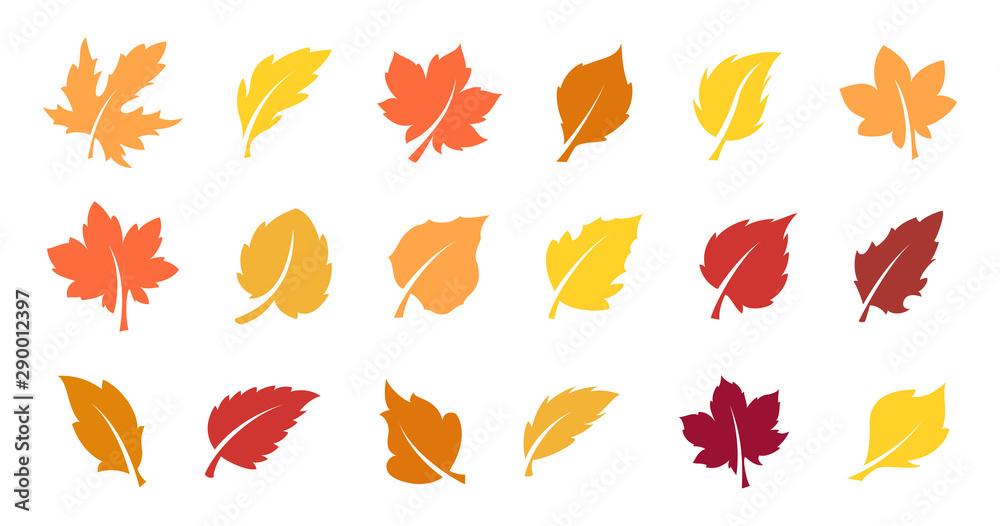 Fototapeta Autumn leaves set