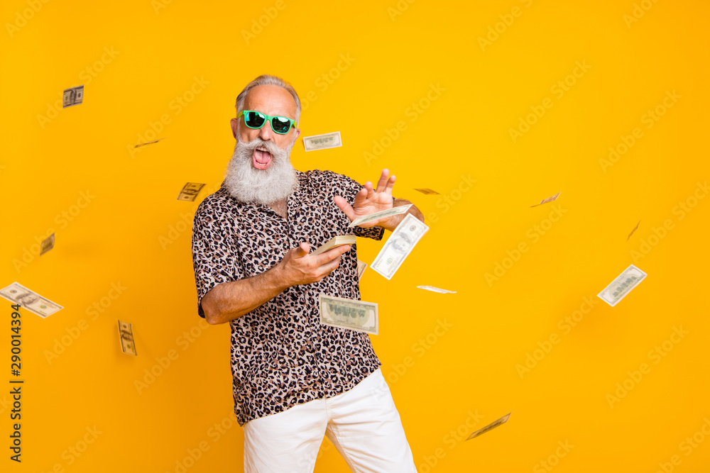 Fototapeta Portrait of crazy funny funky old long bearded man millionaire in eyewear eyeglasses waste money throw banknotes wear leopard shirt shorts isolated over yellow background
