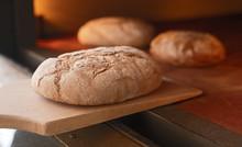 Fresh Bread On Wooden Spade