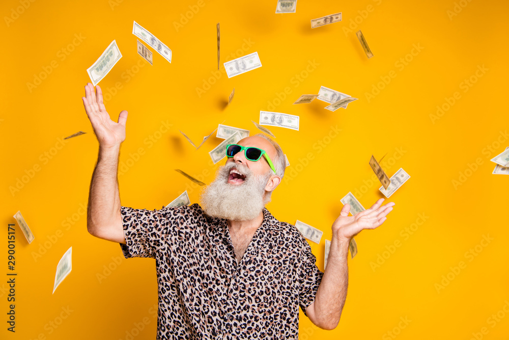 Fototapety, obrazy: Portrait of crazy funky funny old bearded man hipster in green eyeglasses eyewear look up at money falling scream win lottery wear leopard stylish shirt isolated over yellow background
