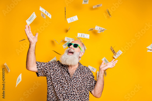 Fototapeta Portrait of crazy funky funny old bearded man hipster in green eyeglasses eyewear look up at money falling scream win lottery wear leopard stylish shirt isolated over yellow background obraz