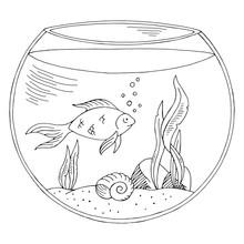 Aquarium Graphic Black White I...