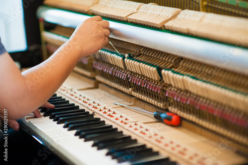 Piano technician  is checking the piano for the customer.Internal parts of the piano - 290029397