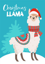 Funny Winter Card With A Cartoon Llama. Vector Christmas Illustration With Text. New Year's Poster.