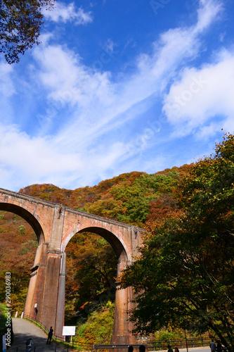 秋の碓氷第三橋梁、通称 めがね橋。安中 群馬 日本。11月上旬。 Canvas Print