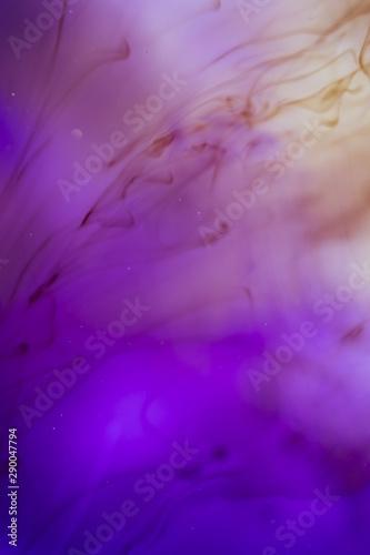 Valokuva Elegant degrade purple shades with smoke