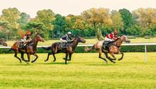 Horse Race Riding Sport Jockeys Competition Horses Running Watercolor Painting Illustration