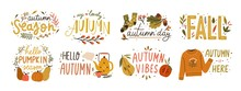 Autumn Hand Drawn Lettering Vector Set. Fall Season Handwritten Slogan Stickers Pack. Autumn Phrases With Cute And Cozy Design Elements Decorative Bundle. Fall Inscription Collection Isolated On White