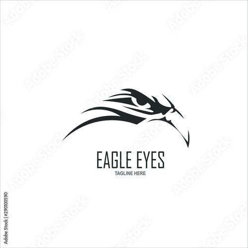 Photo  Eagle eyes logo template design. Vector illustration.