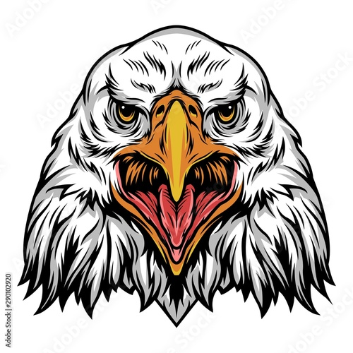 Fotografie, Obraz  Colorful angry eagle head template