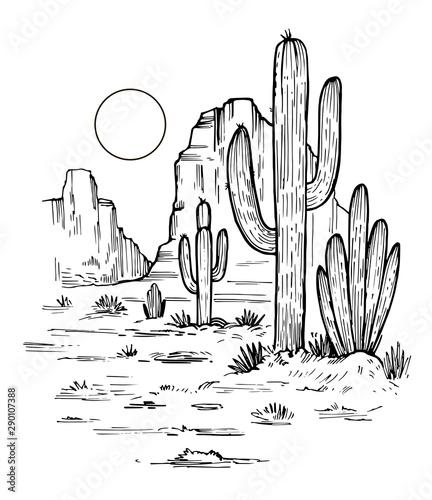 szkic-pustyni-ameryki
