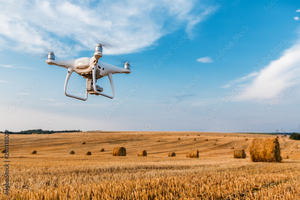 Fototapeta drone quad copter on yellow field