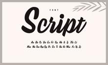 Handwritten Calligraphic Alphabet. Brush Font, Script.