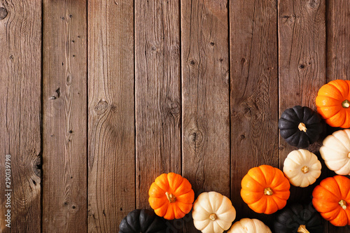 Fototapeta Autumn pumpkin corner border in Halloween colors orange, black and white against a rustic wood background. Copy space. obraz na płótnie