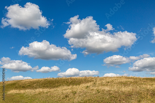 Foto auf Leinwand Rosa dunkel Fluffy white clouds over a field, along the South Downs Way in Sussex