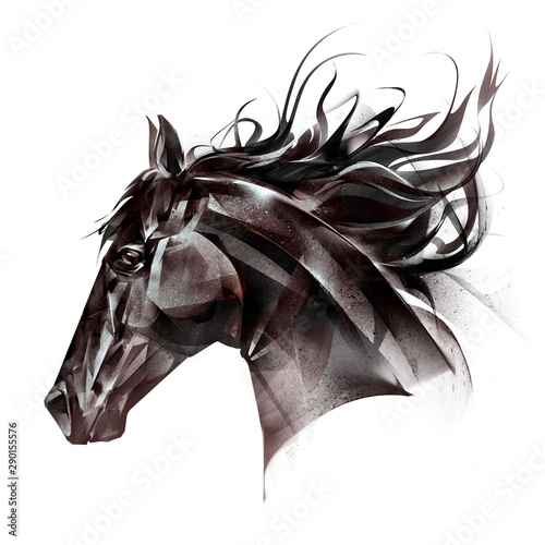 drawn portrait of a horse face on a white background