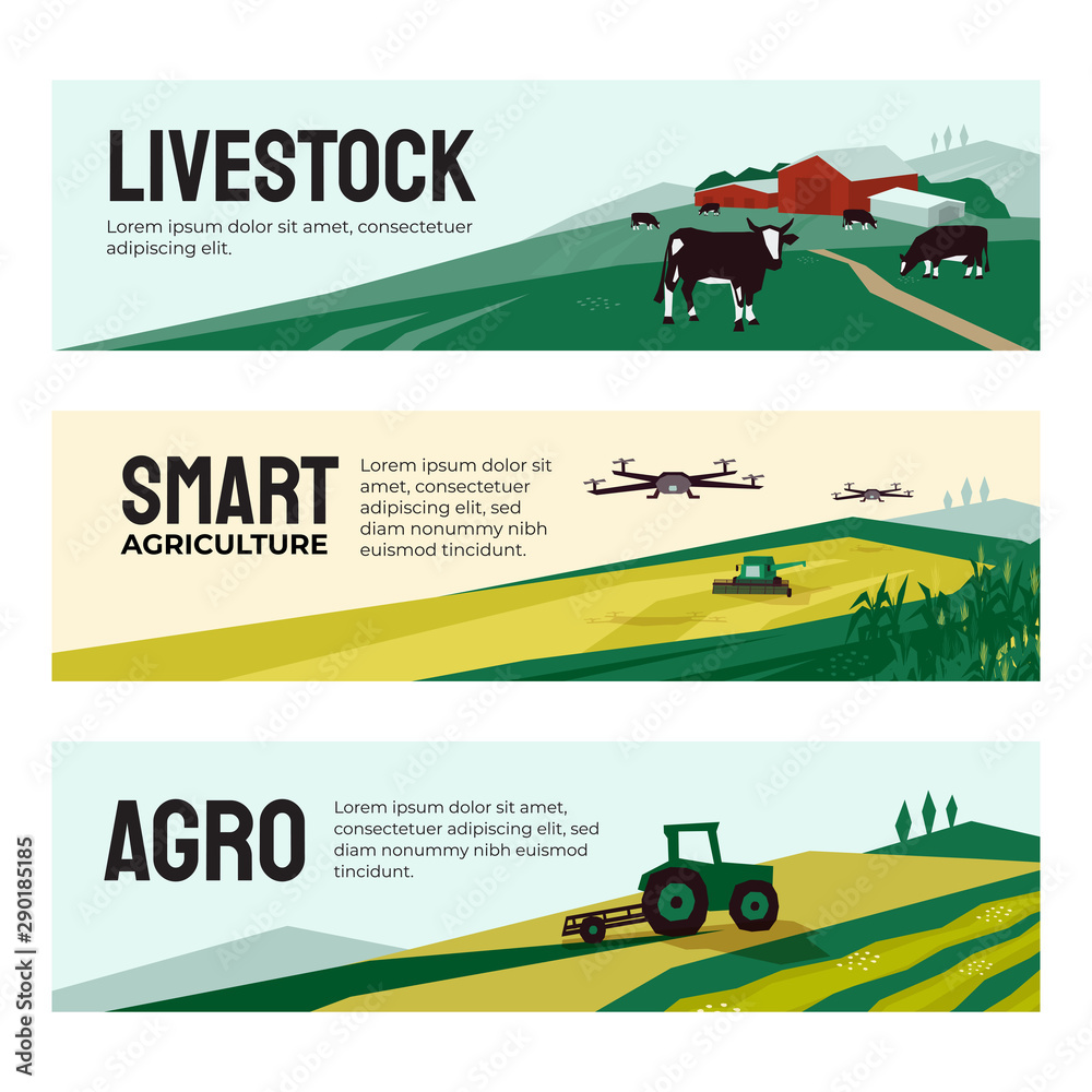 Fototapety, obrazy: Vector illustrations of agriculture, smart farm with drone control, livestock, agricultural buildings. Set of banners with tractor on field, cows in pasture. Template for web, prints, annual report.