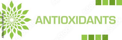 Fototapeta Antioxidants Green Leaves Circular Horizontal  obraz