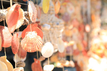 Wind Chimes Made Of Sea Shells...