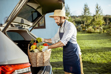 Handsome Farmer In Apron And Straw Hat Putting A Basket Full Of Freshly Picked Vegetables Into The Car Trunk At A Country Cottage