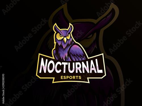 Nocturnal bird owl mascot logo design Tablou Canvas