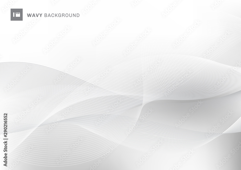 Fototapeta Abstract white and gray color wavy wave lines pattern background with space for your text.