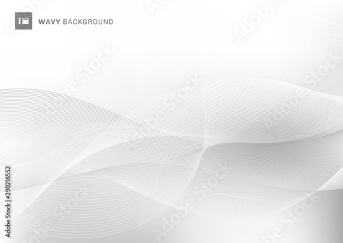 Obraz Abstract white and gray color wavy wave lines pattern background with space for your text. - fototapety do salonu