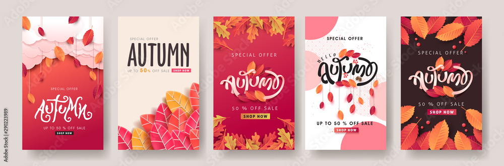 Fototapeta Autumn sale background layout decorate with leaves for shopping sale or promo poster and frame leaflet or web banner.Vector illustration template.