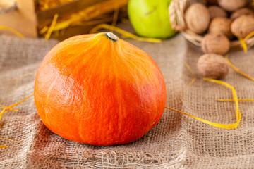 Swieza dynia. Jesienne owoce i warzywa. Kolory jesieni. Zywa kolorystyka. Dynia, orzechy  i gruszka. Zapasy na zime.