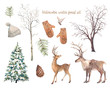 Leinwanddruck Bild - Winter trees and animals set. Watercolor silhouettes of snow covered Christmas tree, birch and elm, deers, bird, pinecone.