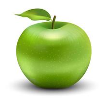 Vector Illustration Of Green A...