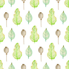 Pattern With Green Oak Leaves And Poppy Seeds.