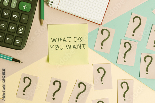 Conceptual hand writing showing What Do You Want Canvas Print