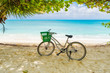 canvas print picture Lonely vintage bicycle on the tropical  sandy beach by a palm tree with sky and calm sea at background.