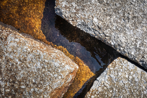 Geometric Rock Closeup at Lake's Edge Billede på lærred