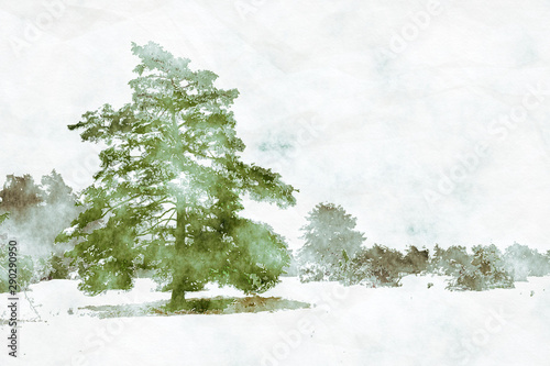 Foto auf AluDibond Weiß winter landscape scenery with a pine tree digital watercolor painting