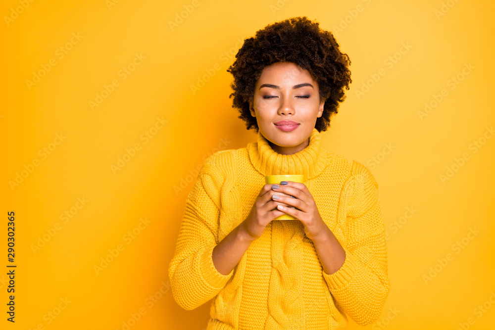 Fototapeta Photo of charming cute casual curly wavy pretty fascinating trendy girlfriend smelling her tea in cup holding with her two hands wearing knitted pullover with collar isolated vivid color background