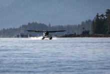 Seaplane Landing In The Harbor...
