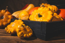 Fresh Picked Gourds In Wooden Crate