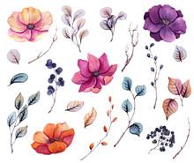 Set Of Watercolor Autumn Flowers