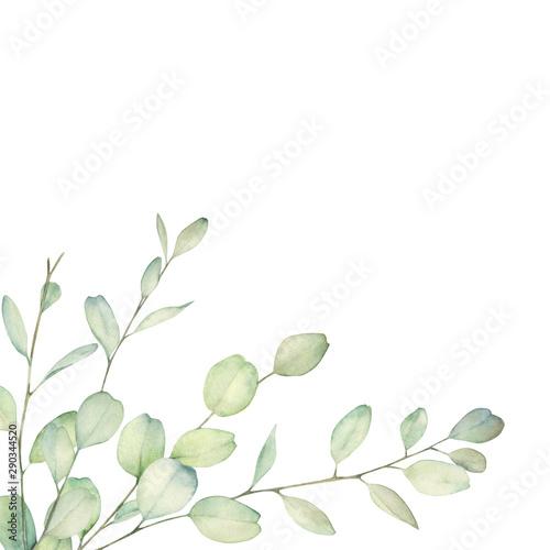Watercolor floral card with eucalyptus branch Obraz na płótnie