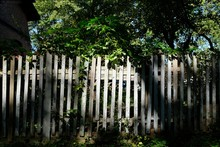 Wooden Light Grey Fence By The...